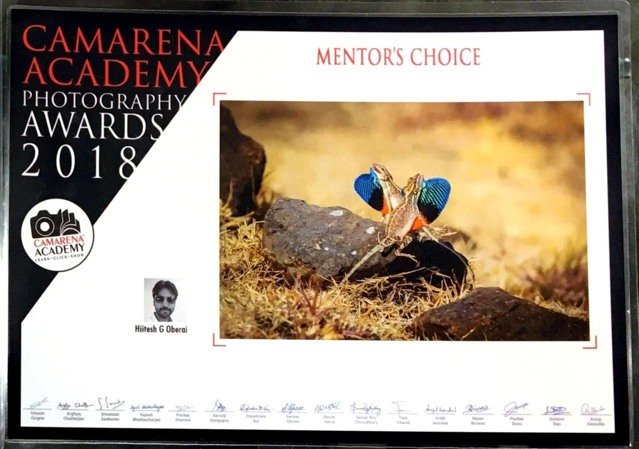 Hiitesh Oberai Bags prestigious awards for Photography.